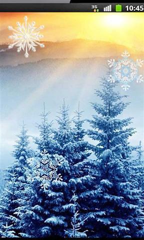 冬季日落动态壁纸