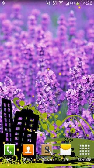 紫色花海绿豆动态壁纸
