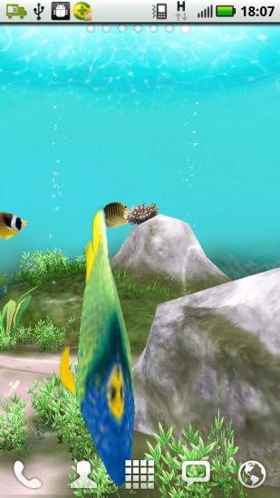 3D Undersea World