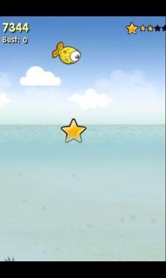 小小皮球鱼