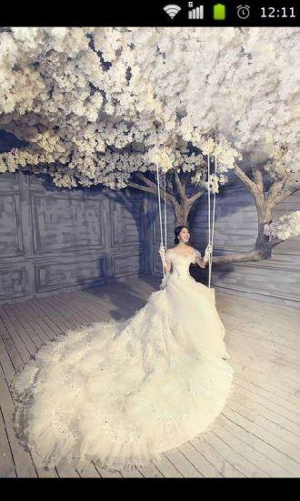 最美新娘婚纱三