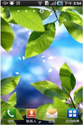 清新绿叶动态壁纸