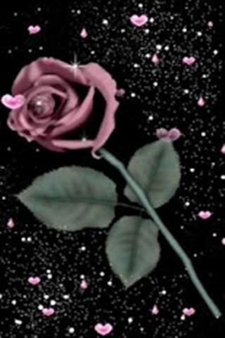 Pink Heart Rose Live Wallpaper