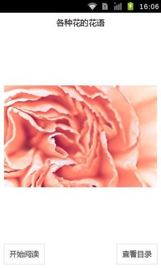 各种花的花语