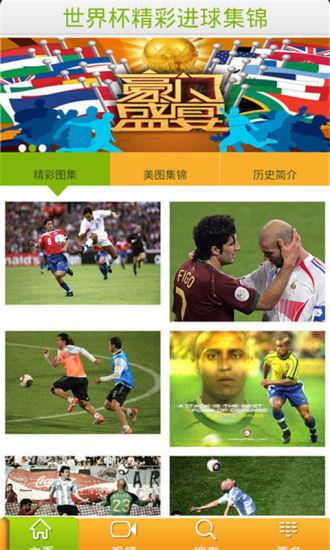 世界杯精彩进球集锦