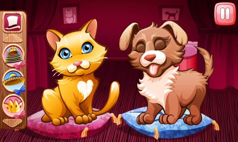 猫与狗的故事