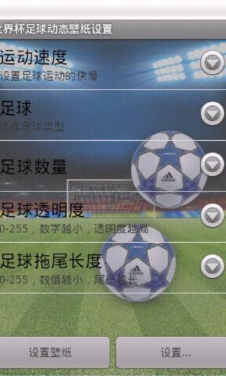世界杯足球动态壁纸