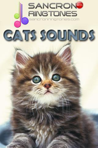 猫的声音铃声