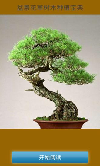 盆景花草树木种植宝典