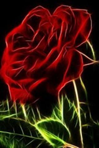 玫瑰花壁纸