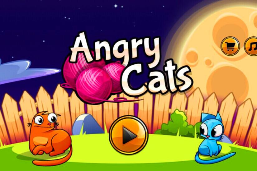 愤怒的小猫