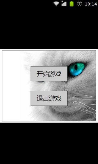 灵动小猫主题拼图