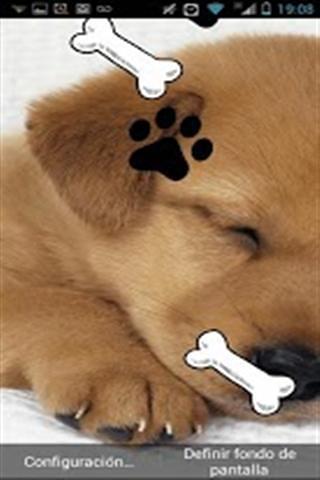 睡觉的狗动态壁纸