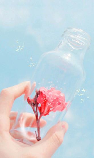 玻璃瓶和花动态壁纸