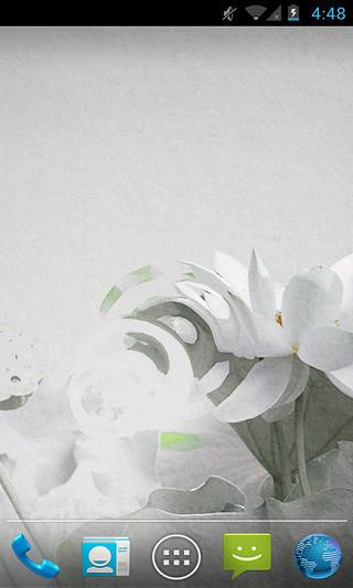 水墨夏荷-动态壁纸