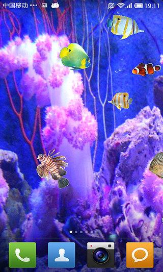 珊瑚海底动态壁纸