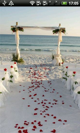 美丽人生之创意婚礼