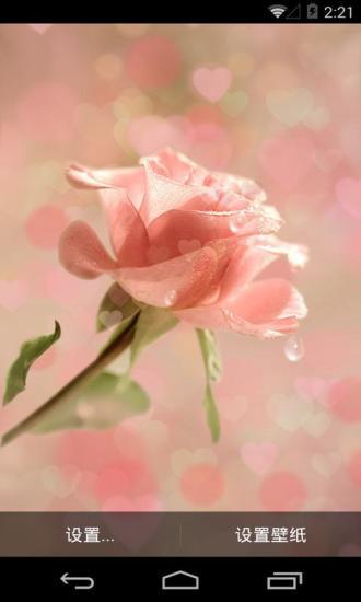 粉色玫瑰梦象动态壁纸