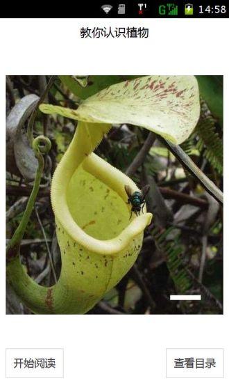 教你认识植物