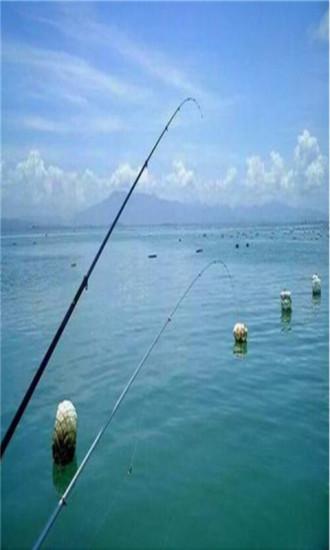 湖北钓鱼网