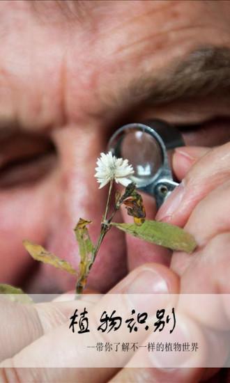 植物辨别查询