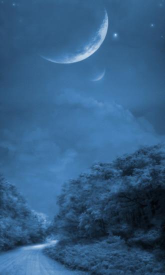 月全食的夜空