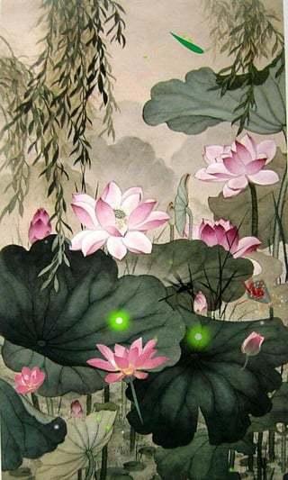 藕花深处-绿豆动态壁纸