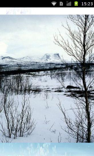 冰天雪地图片壁纸