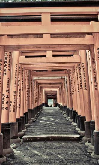 京都古寺-绿豆动态壁纸