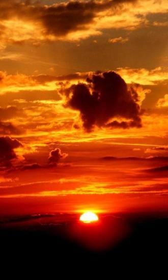 赤红夕阳-绿豆动态壁纸