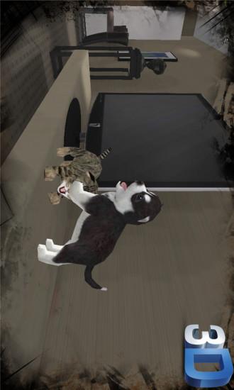 调皮小狗3D