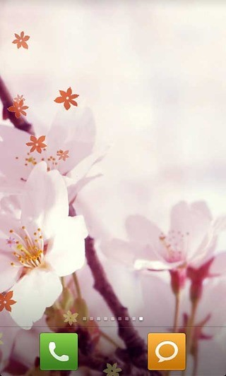 唯美樱花动态壁纸