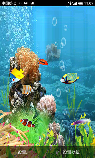 唯美水族馆动态壁纸