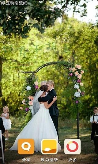 浪漫婚礼绿豆动态壁纸