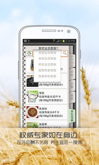 养生厨神 健康 App-愛順發玩APP