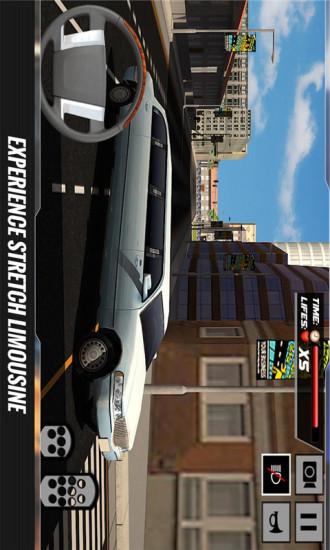 豪华轿车司机3D