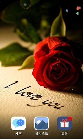 挚爱玫瑰动态壁纸