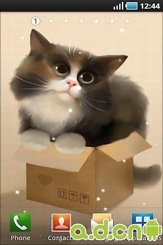 玩工具App|盒子猫动态壁纸免費|APP試玩