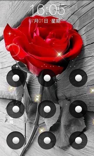 娇艳玫瑰壁纸锁屏