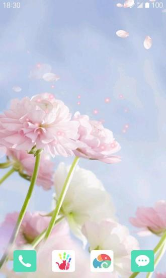 春暖时光梦象动态壁纸