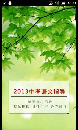 2013中考语文复习