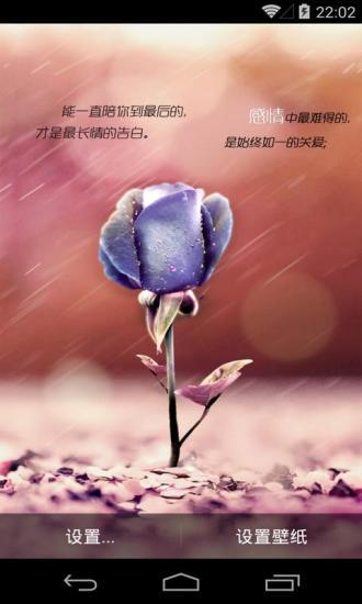 执子手等花开蓝色玫瑰高清省电梦象动态壁纸