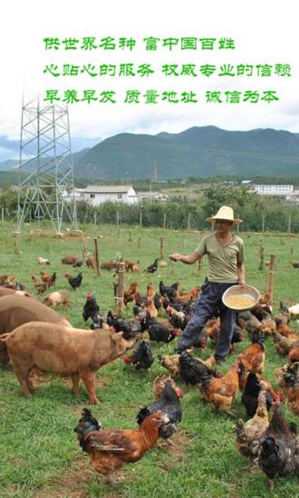 玩生活App|中国养殖网免費|APP試玩