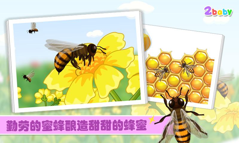 昆虫世界一蜜蜂