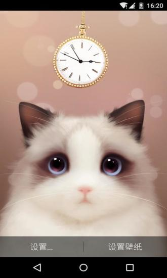 布偶猫梦象动态壁纸