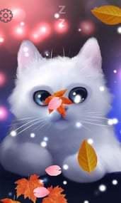 可爱猫咪-3D动态壁纸