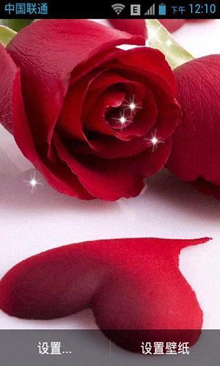 玫瑰花心动态壁纸