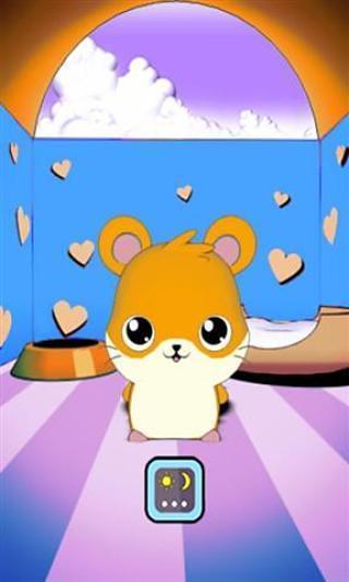 我可爱的仓鼠