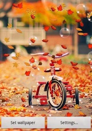 秋季現場牆紙免費