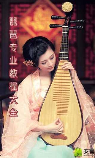 琵琶专业教程大全